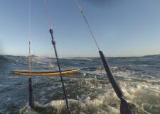 Schwimmen in der kalten Ostsee